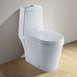ariel co1024 toilet with dual flush toilet