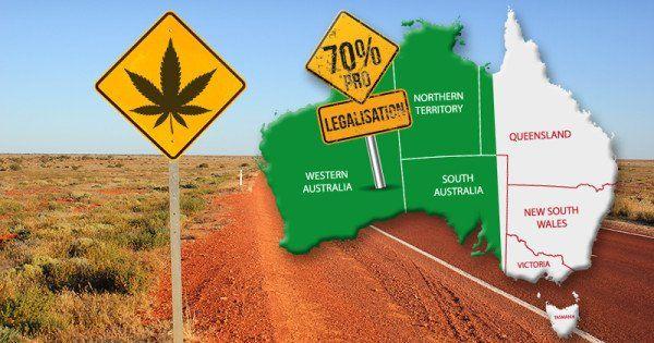 Potads .. #new #cannabis #advertising #forum #cbd #mmj products  http://potads.mlpic.twitter.com/meoORfcdiv https://twitter.com/BackyLeaf/status/928578062698143747