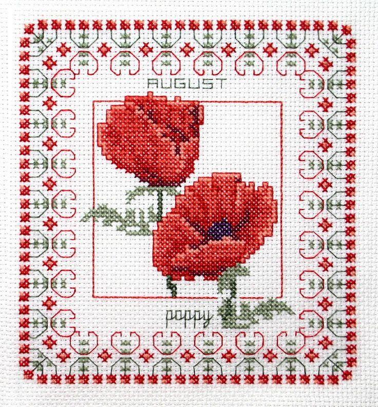 August poppy • design #0348