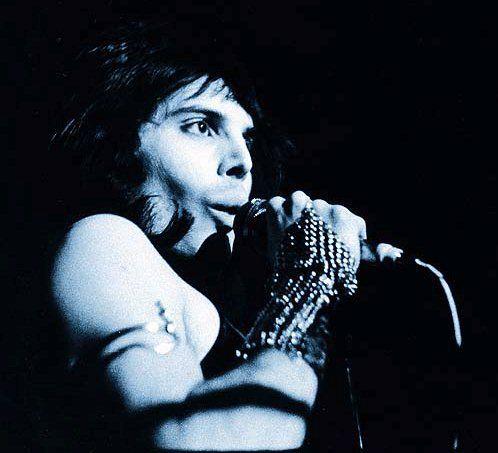 Last Picture Of Freddie Mercury | Freddie+Mercury+freddie.jpg