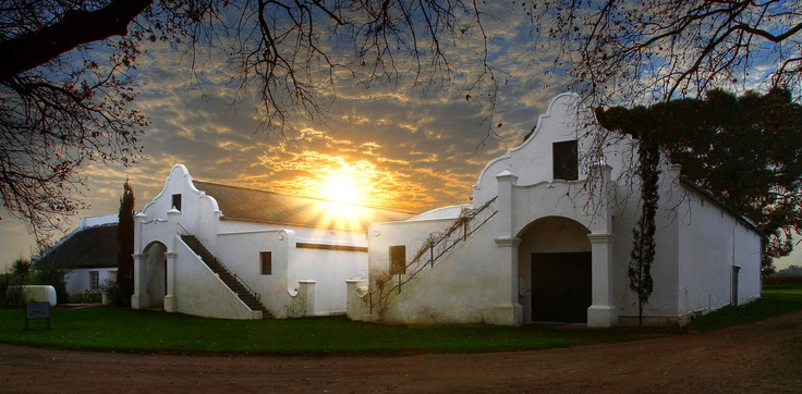 Vergenoegd's Old World style cellar where full bodied Stellenbosch reds are produced in the Old World style and kept back for years until optimal drinkability has been reached. As a result Vergenoegd release some of the oldest vintages of wine on the market annually.