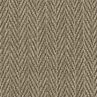 """This herringbone nylon carpet design is sophisticated and soft but has the look and feel of """"rustic""""...without the """"roughness"""". 100% Anso nylon by Shaw Floors """"Turtle Cove"""" color Dune."""