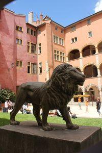 Lion in Lyon France Quartier du Vieux Lyon en été