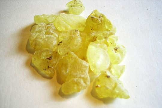 Mastiha is a unique product, which can be found nowhere in the world, but in the island of Chios. It's produced by the resins of the tree Pistacia Lentiscus. Hippocrates, the father of Medicine, indicated its therapeutic qualities.