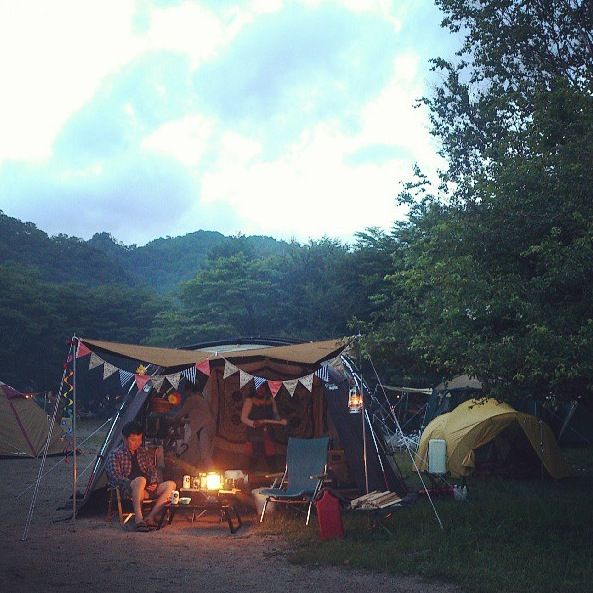 147 Best Ideas About Camping On Pinterest