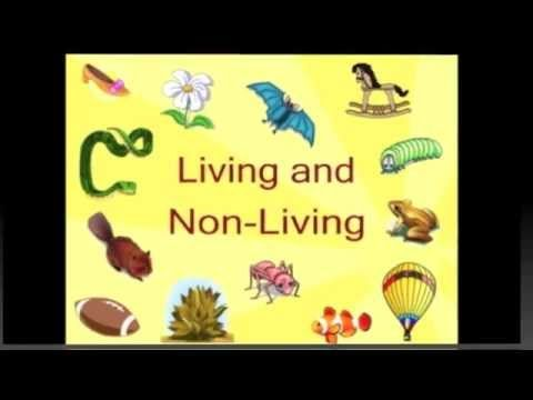 Free Video Youtube - Living and Non-Living Things