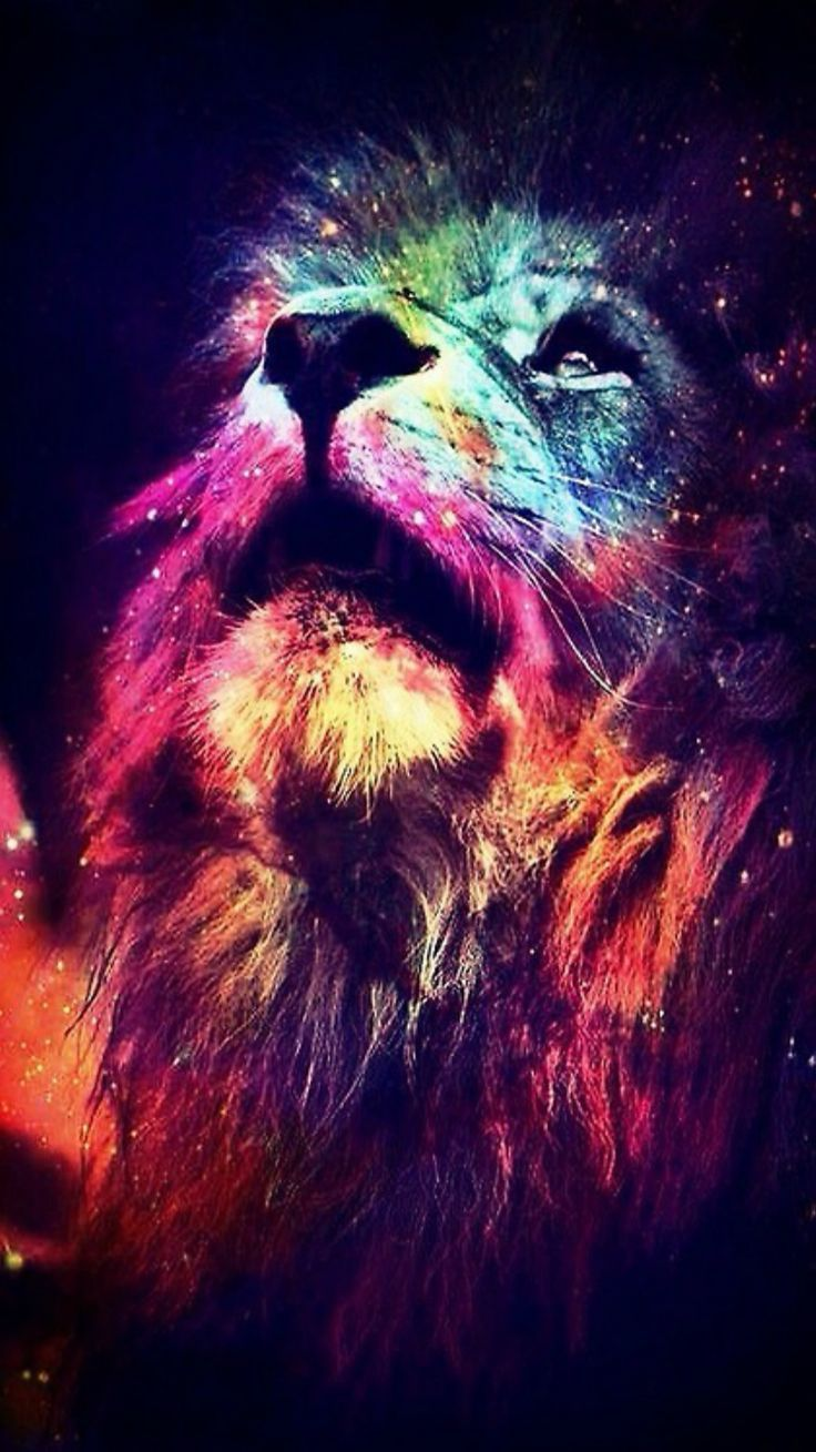 Lion Wallpaper Full Hd Earthly Wallpaper 1080p Lion Wallpaper Abstract Lion Colorful Lion