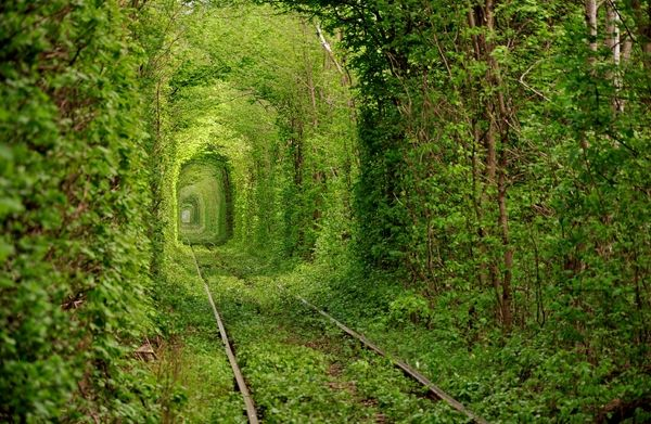 """""""The romance of the rails has never been more evident in this remote spot in the Ukraine. Near the small town of Kleven sits what locals call the Tunnel of Love, an old railway track that winds through a leafy forest."""" -from """"5 more real places that look like they're from a movie"""""""