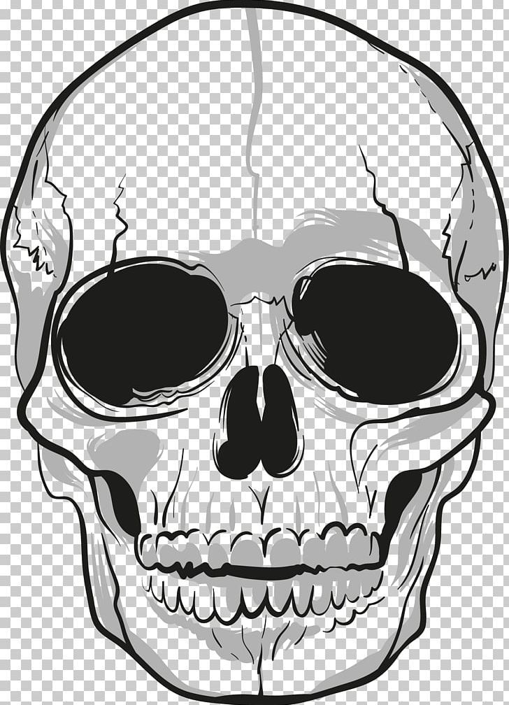 Skull Png Skull Skull Png Skulls Drawing