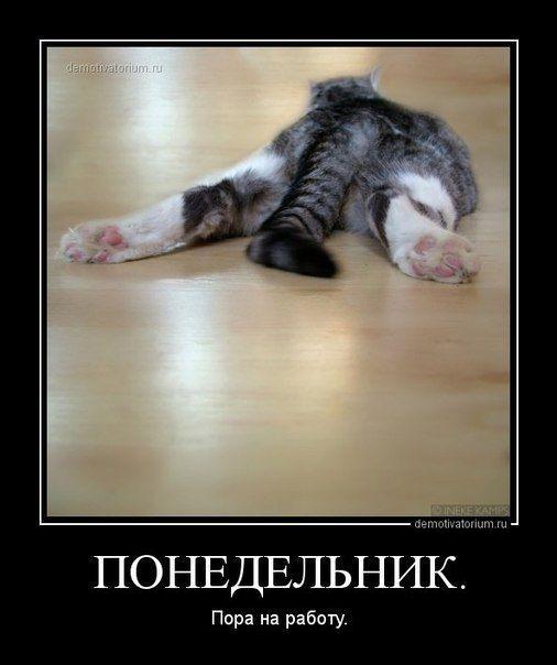 С добрым утром    Взбодритесь друзья! Скоро ведь пятница! (=