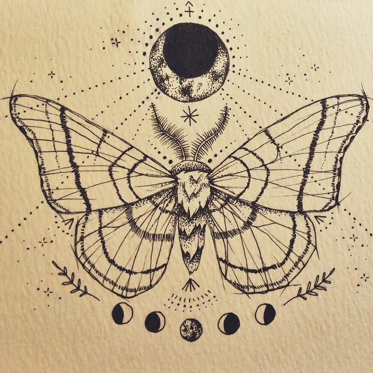 :: moon moth :: sternum tattoo design commission