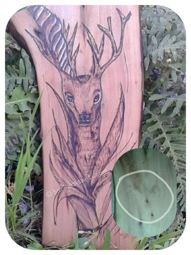 #cervo su ritaglio di palissandro  © barbarasanti.com  #pirography #homedecor #artigianato #toscana #italia #tuscany #italy #madeinitaly #pirographyart #artwork #art #myart #legno #wood #woodart #barbarasanti