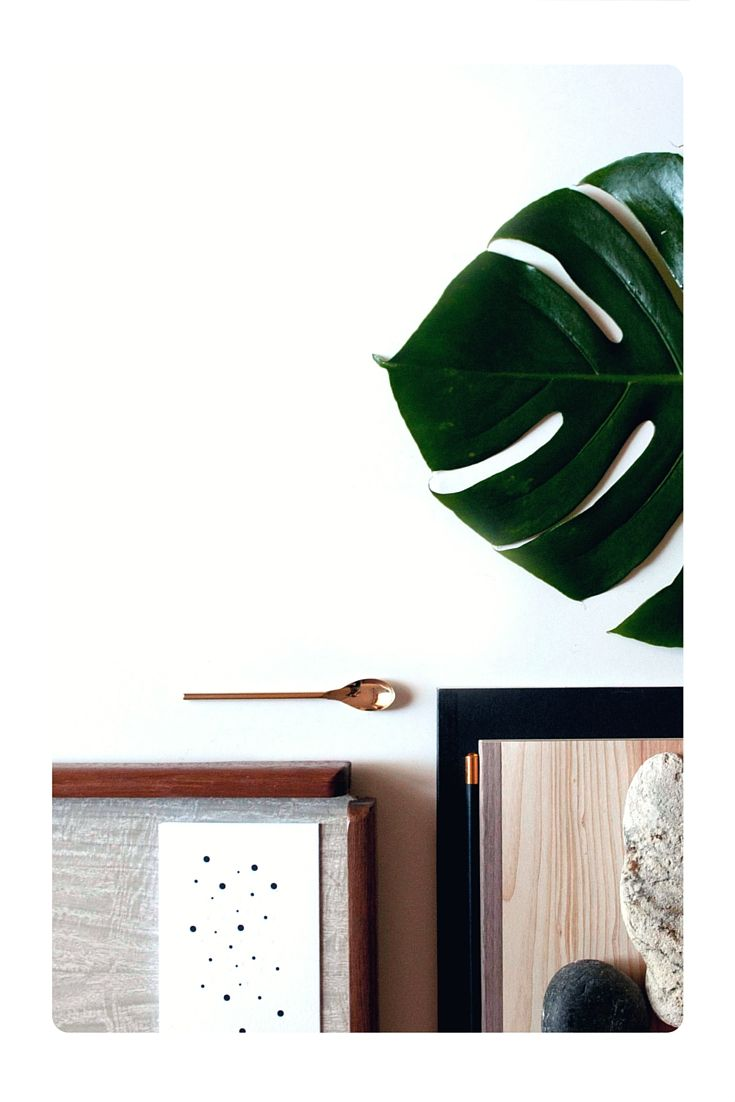 I bonsai sono alberi in miniatura, che vengono mantenuti intenzionalmente nani, anche per molti anni, tramite potatura e riduzione delle radici, scopri tutti annunci su www.kijiji.it. Clicca qui per scoprire di più!>>