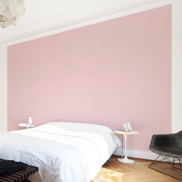 #Vliestapete - Colour Rose - Uni-Tapete Breit #uni #Tapete #einfarbige #tapeten #rosa