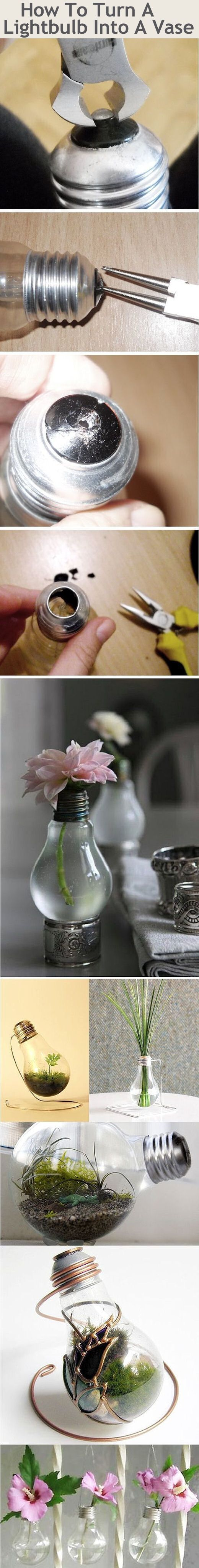 How To Turn A Light Bulb Into A Vase Pictures, Photos, and Images for Facebook, Tumblr, Pinterest, and Twitter