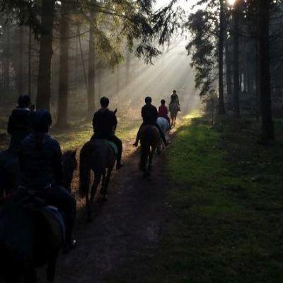 Trektocht eigen paard