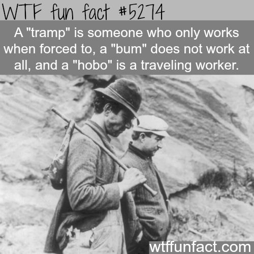 """The difference between """"tramp"""", """"bum"""", and """"hobo"""" - WTF! not-so-fun facts!"""