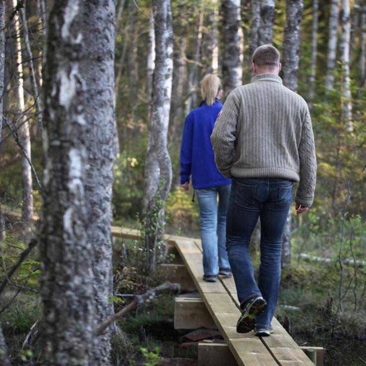 Hiking on the wetland of Gråstensmon, Målerås.