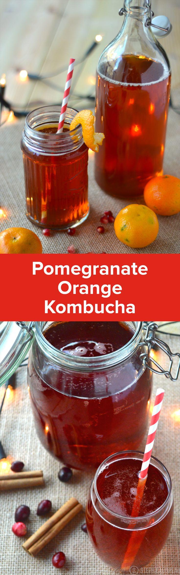 Holiday Kombucha Flavors | StupidEasyPaleo.com
