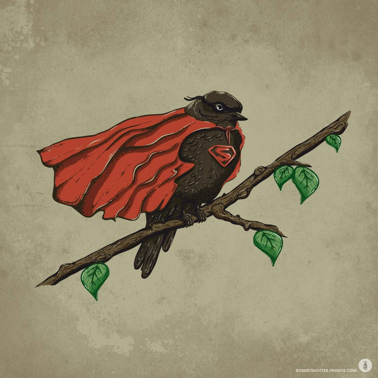 Super Bird (Illustration by Robert Richter, personal artwork 2011)