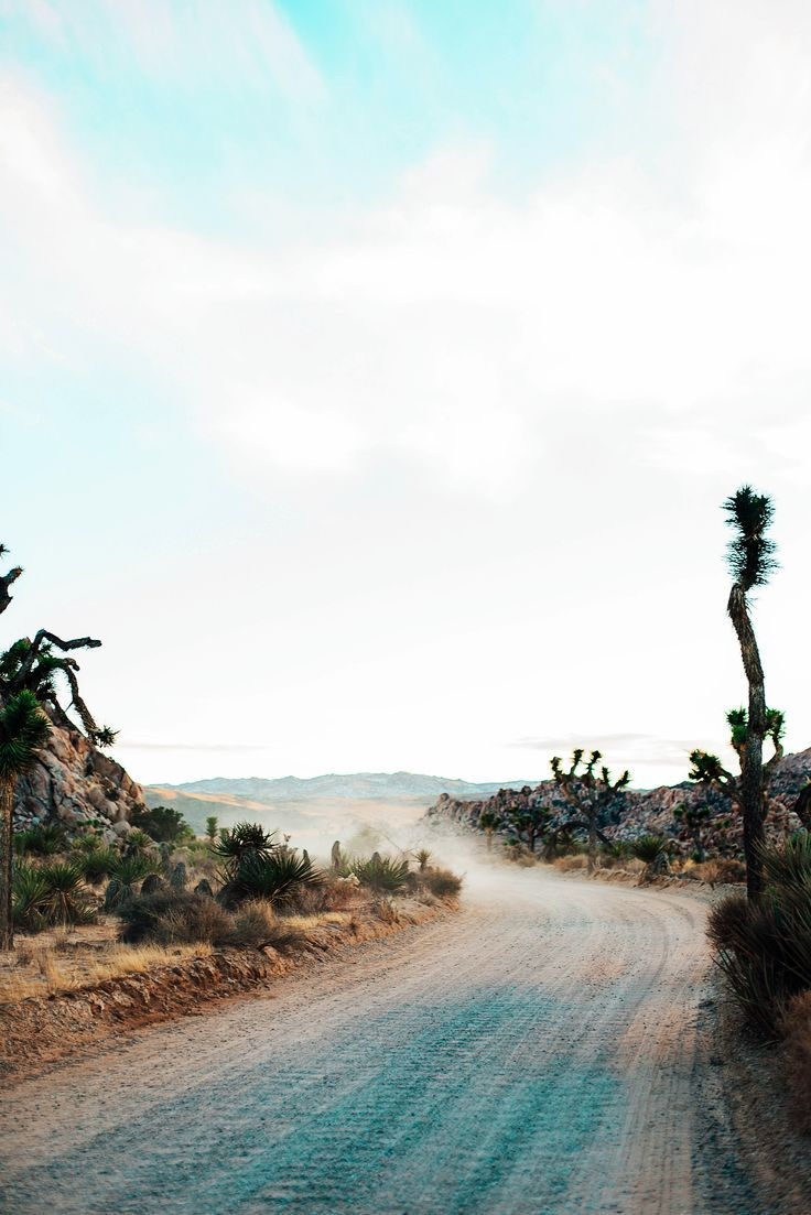USA Travel Inspiration - wanderlust | travel - Palm Springs, CA