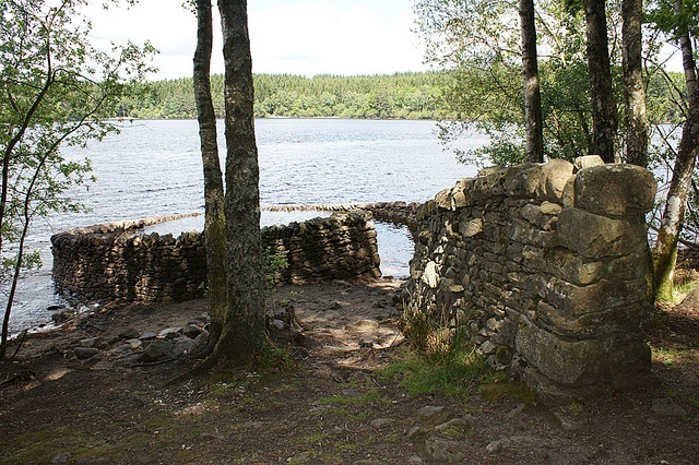 Sculpture, lac de Vassivière... Un petit tour et puis s'en va...