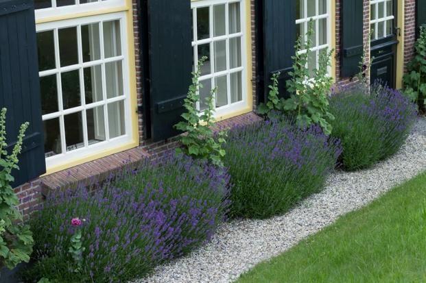 Ogród żwirowy to ciekawy pomysł na otoczenie domu
