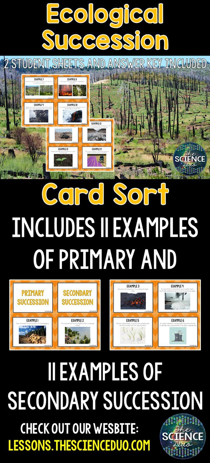 Ecological Succession Card Sort Ecological Succession Ecology Ecology Activity