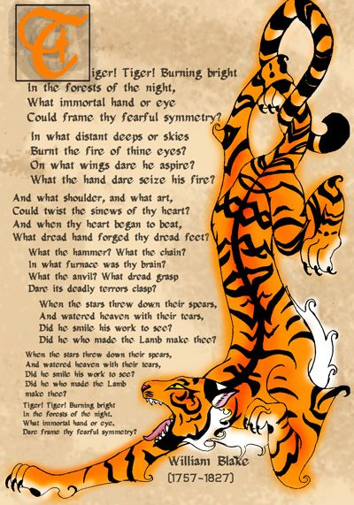essays on the tyger by william blake Both of these rhetorical questions are asked by william blake in his poem the tyger the poem  essay/term paper: the tyger  free essays available online are.