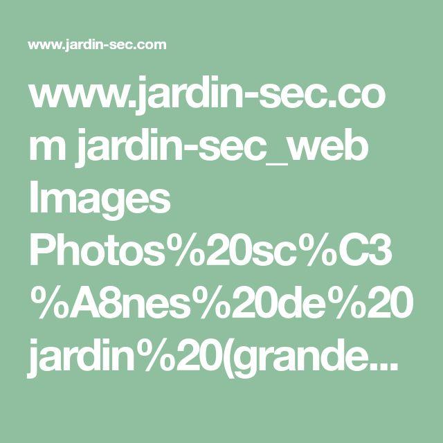 www.jardin-sec.com jardin-sec_web Images Photos%20sc%C3%A8nes%20de%20jardin%20(grandes) E04323.jpg