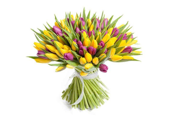 удивительный Букет 101 тюльпан, желто-фиолетовые  #Букеты #Оригинальныебукеты,Букет101тюльпан,желто-фиолетовые Посмотретьhttp://xn--80aaahaatmc2afxyc9bl9d.xn--p1acf/product/buket-101-tyulpan-zhelto-fioletovye