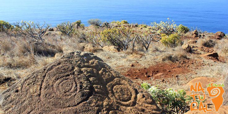 Disegni preistorici - 10 motivi per visitare l'Isola de La Palma, Canarie © 2016 La Palma Natural - Isola de La Palma