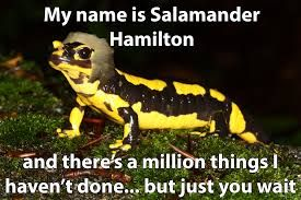 Do you mean..SALMILTON!? (No, ok...) but like, why is this even a thing??