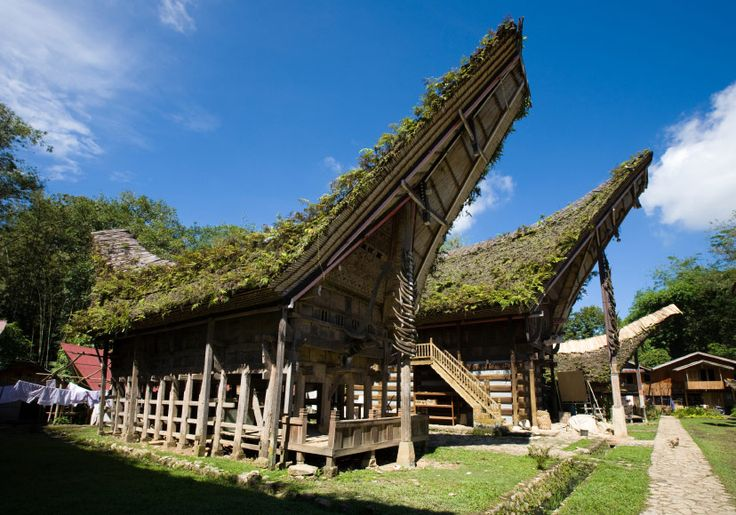Traditional houses of a Toraja village in South Sulawesi, Indonesia. The buffalo horns on the front columns are a symbol of wealth and prestige.