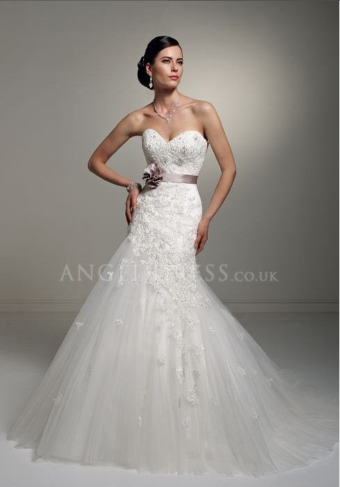 Dream wedding dress sweetheart lace fit n 39 flare with for Fit n flare lace wedding dress