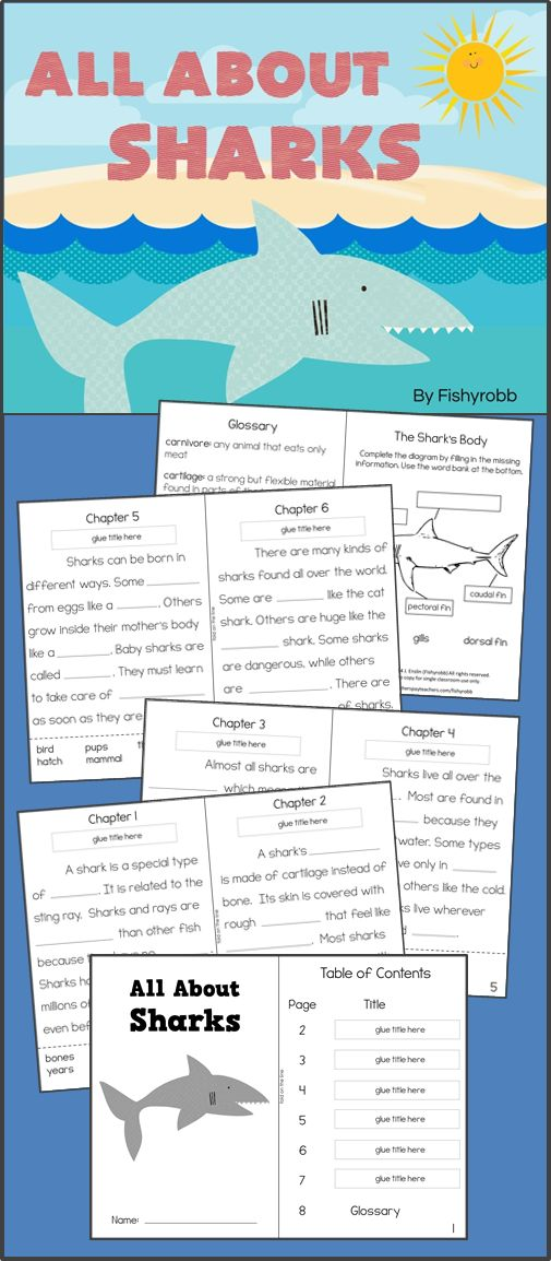 All About Sharks - Informational Text Reading Comprehension Activity Book. Skills include main idea, vocabulary, context clues, and text features.