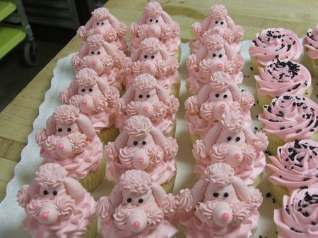 pink poodle cupcakes