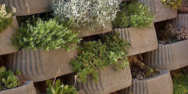 Teplé podzimní počasí je vhodné pro drobné úpravy a stavby okolo domu a na zahradě, například můžete založit opěrnou zídku ze svahovek. Stavba je rychlá, nenáročná a snado se osází drobnými dřevinami a trvalkami, které do zimy stihnou zakořenit.