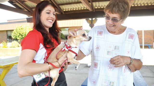 Pet therapy delivers smiles and results