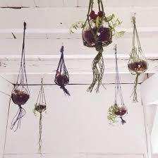 Znalezione obrazy dla zapytania rope hanging terrarium glass