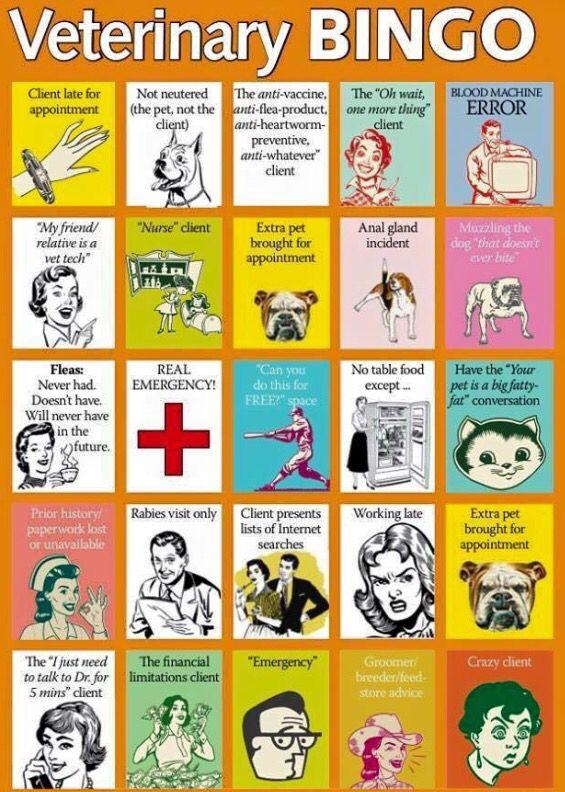 Veterinary bingo