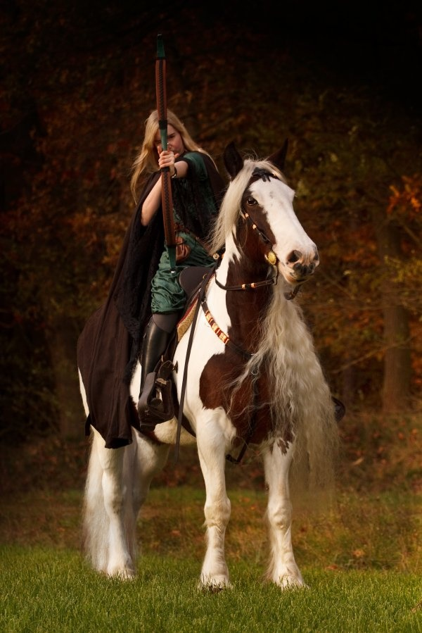 ~ irish archer ~