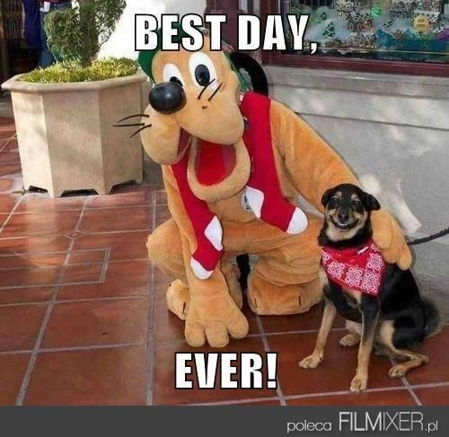 I love the little dog's smile!! Best day ever!
