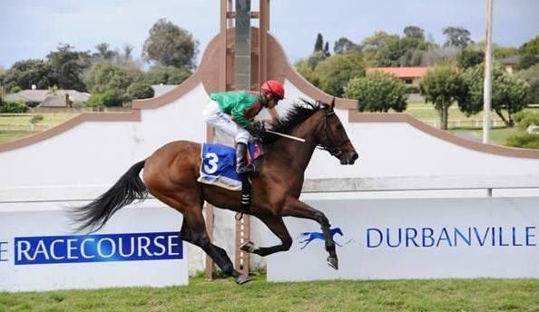 Durbanville racecourse - Durbanville - Cape Town