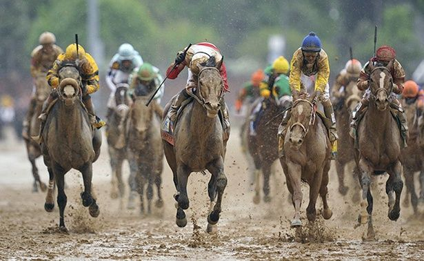 The Ugly Truth About Horse Racing