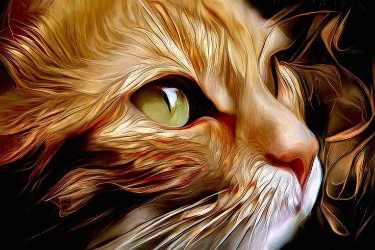 Ginger Cat Cat Painting Orange Cat Art Cat Print Ginger Cat Decor Cat Wall Art Orange Cat Print Ginger Cat Names Cat Art Ginger Cats