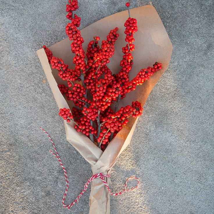 Fresh Red Winterberry Bunch at Terrain