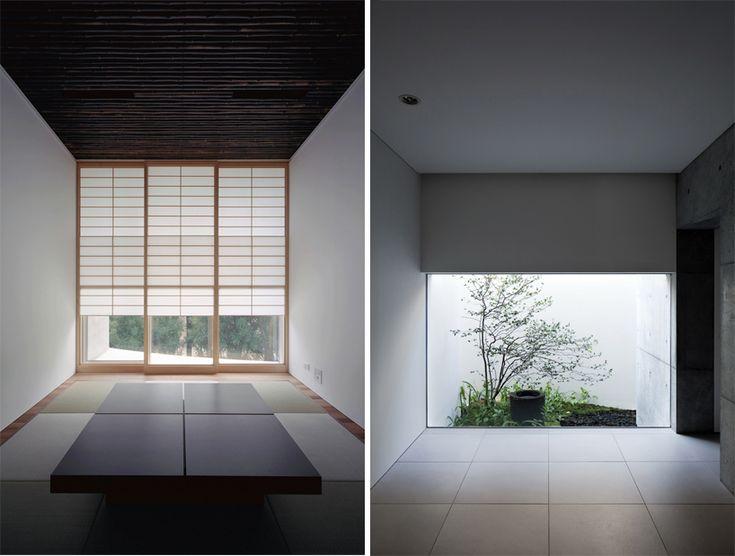 40 Best The Art Of Bonsai Images On Pinterest Bonsai