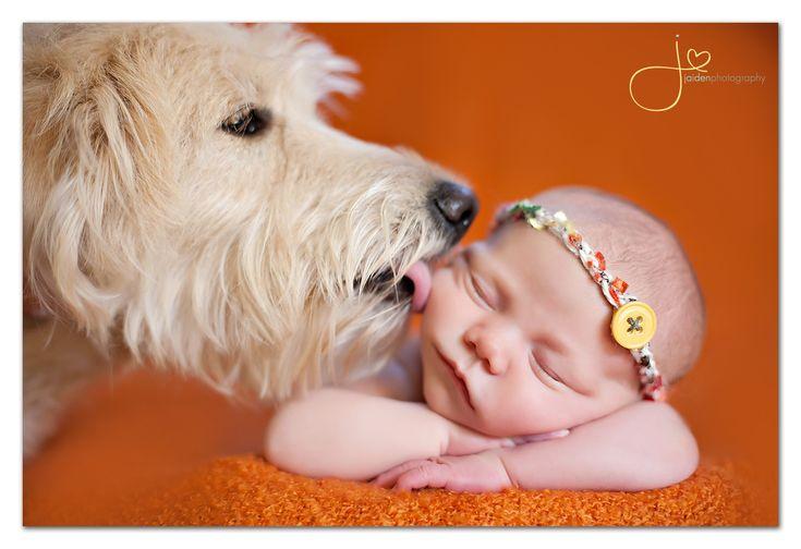 Dogs + Babies = Cute