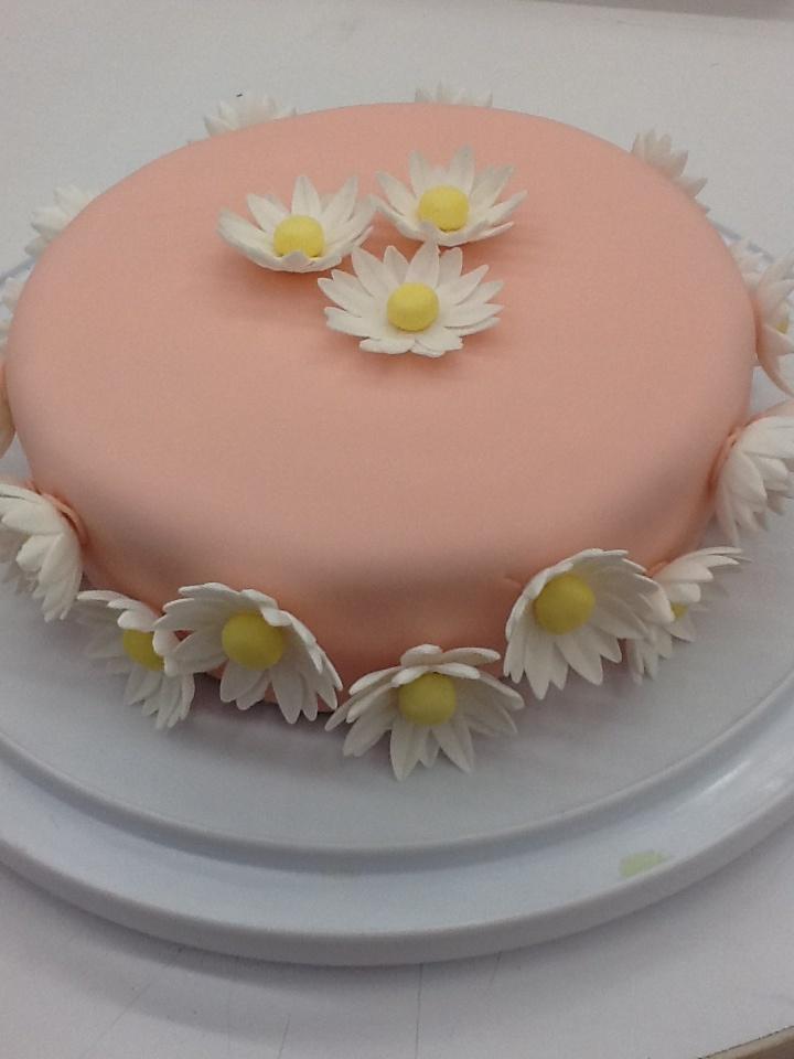 Ac Moore Cake Decorating Classe